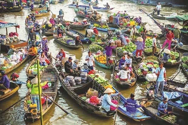 Provincia vietnamita de Can Tho promueve turismo verde en mercado flotante de Cai Rang hinh anh 1