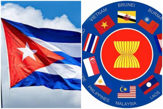Cuba evalua potencialidades de cooperacion con la ASEAN hinh anh 1