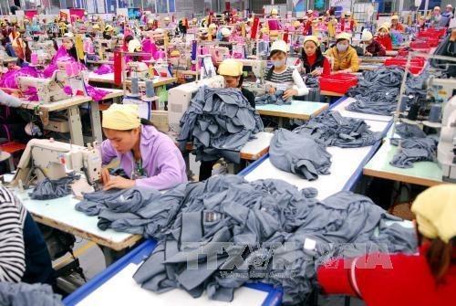 El 90 por ciento de empresas en Vietnam golpeadas por la pandemia, senala informe hinh anh 2