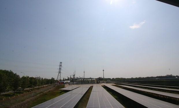 Inauguran primera planta de energia solar en region del Delta de Mekong hinh anh 1
