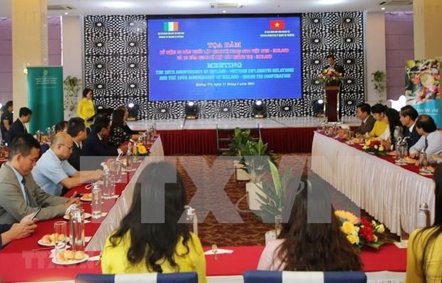 Irlanda y provincia vietnamita de Quang Tri robustecen lazos de cooperacion hinh anh 1