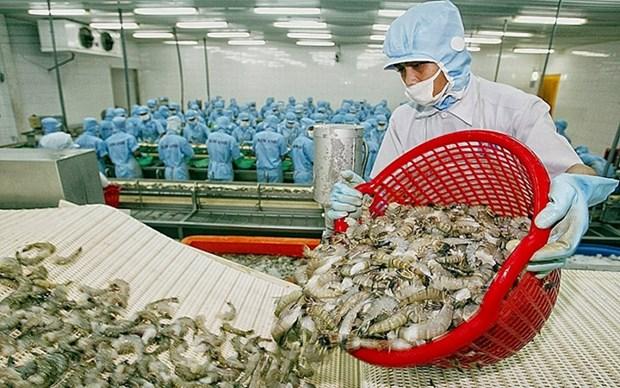 Vietnam, el mayor proveedor de camarones a Japon hinh anh 1