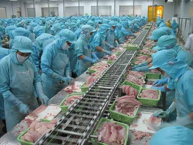 Vietnam por ingresar en 2045 al top 3 mundial de exportadores de productos acuicolas hinh anh 1