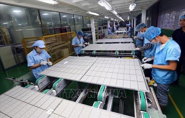 Vietnam promueve estrategia nacional para el crecimiento verde en la etapa 2021-2030 hinh anh 1