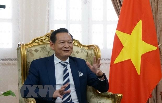 Vietnam y Egipto fortalecen amistad y cooperacion hinh anh 1