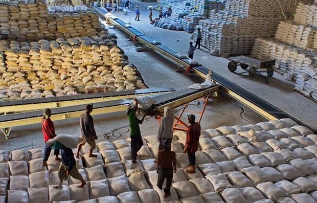 Vietnam exporta 638 mil toneladas de arroz al extranjero en primer bimestre hinh anh 1