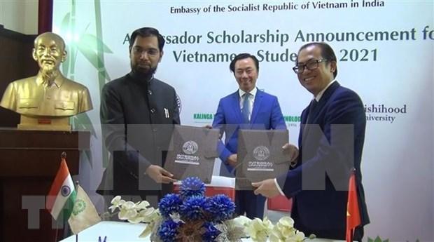 Embajada de Vietnam anuncia becas de las universidades de la India en 2021 hinh anh 1