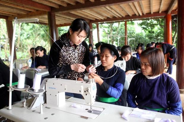 Provincia vietnamita por impulsar desarrollo de areas de minorias etnicas hinh anh 1