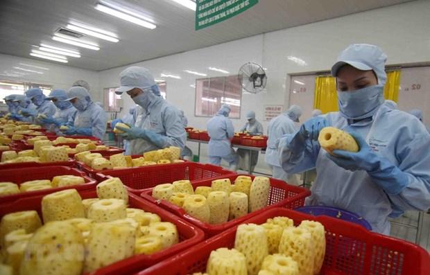 Vietnam por impulsar desarrollo de procesamiento de frutas y verduras hinh anh 1