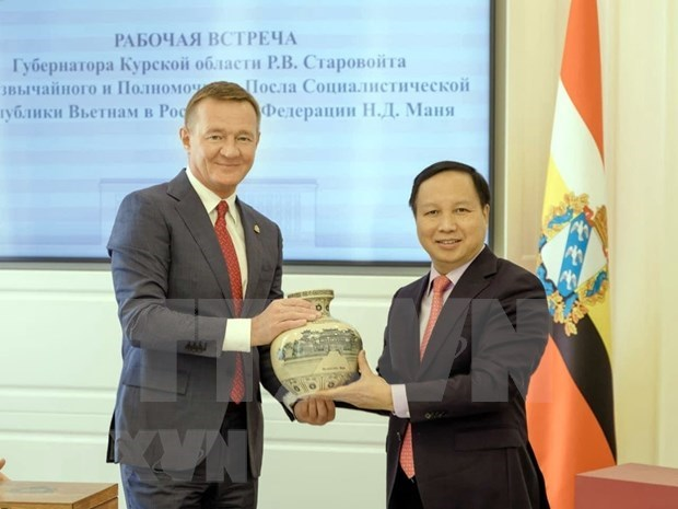 Vietnam y Rusia impulsan cooperacion entre localidades hinh anh 1