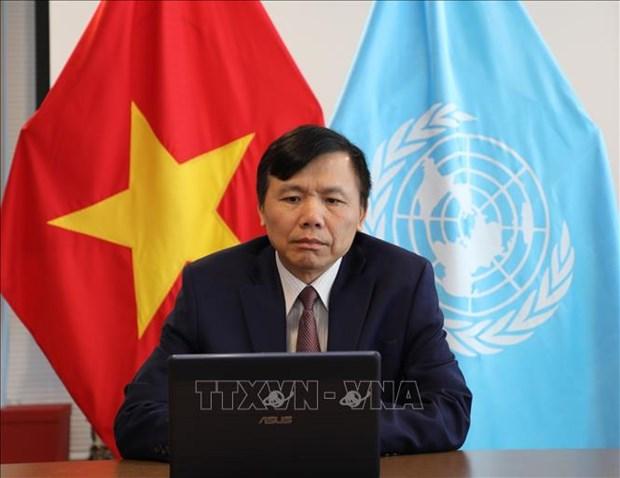 Vietnam apoya el proceso de paz en Oriente Medio hinh anh 1