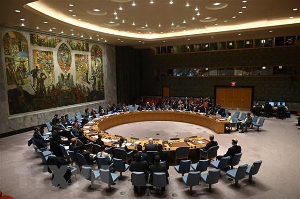 Vietnam asumira en abril presidencia del Consejo de Seguridad de ONU hinh anh 1