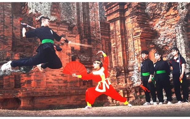 Proponen solicitar reconocimiento de artes marciales tradicionales vietnamitas como patrimonio mundial hinh anh 1