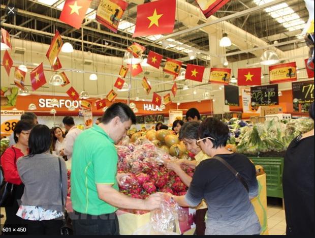Productos vietnamitas aspiran a ingresar al mercado electronico de Singapur hinh anh 1