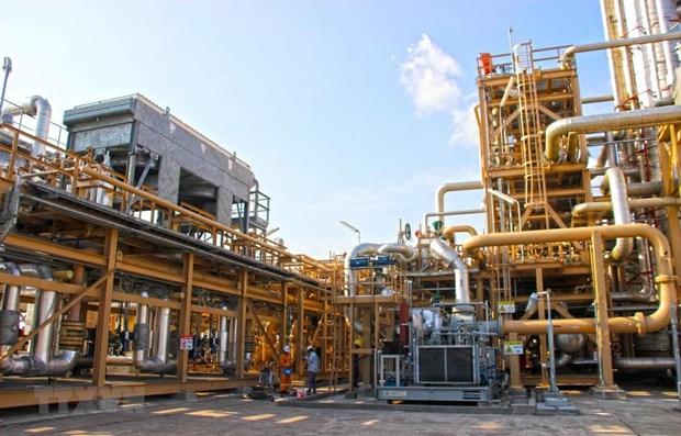 Desarrollan complejo de Ca Mau en centro de industria de petroleo y gas de Vietnam hinh anh 1