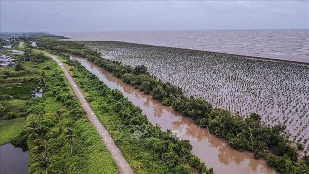 Delta del Mekong busca desarrollo sostenible ante cambio climatico hinh anh 2