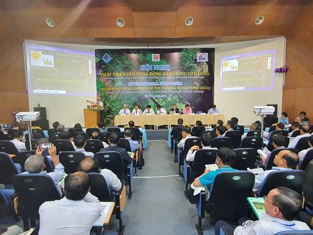Delta del Mekong busca desarrollo sostenible ante cambio climatico hinh anh 1