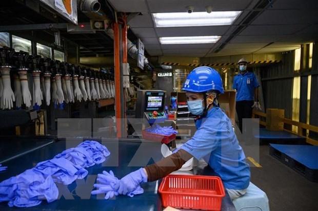 ASEAN y Corea del Sur refuerzan cooperacion en trabajo y empleo hinh anh 1