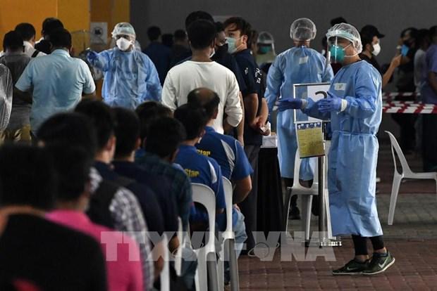 Singapur multa a nueve mil 600 casos por violar normas preventivas del COVID-19 hinh anh 1