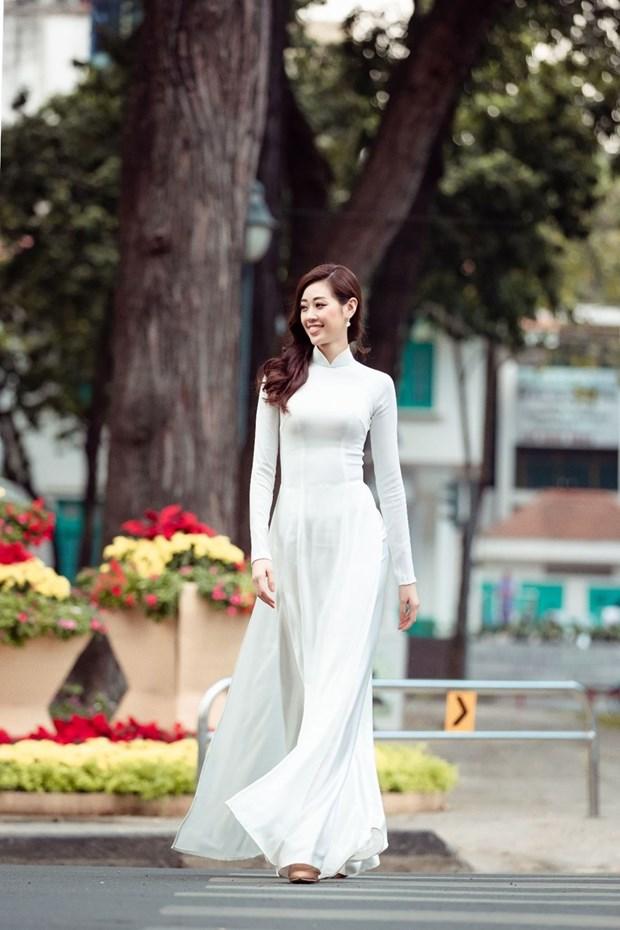 Efectuaran gran evento en honor a tunica tradicional de Vietnam hinh anh 1