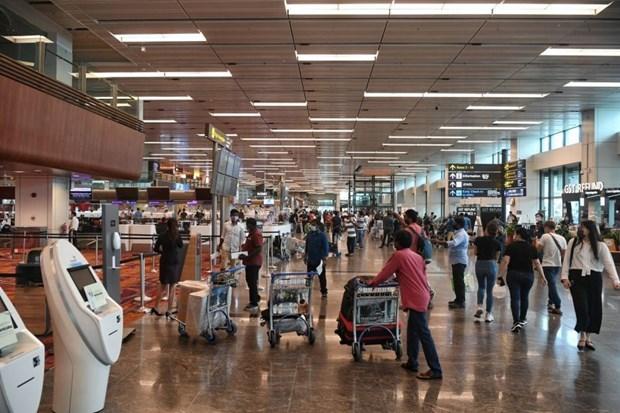 COVID-19: Singapur, uno de los primeros paises en aceptar el Digital Travel Pass hinh anh 1