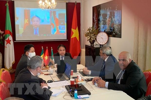 Fortalecen cooperacion comercial entre Vietnam, Argelia y Senegal hinh anh 1