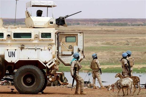 Llama Vietnam a impulsar esfuerzos por implementar acuerdo de paz en Mali hinh anh 1