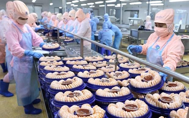 En alza exportacion de camarones de delta de rio Mekong en Vietnam hinh anh 1