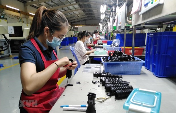 Provincia vietnamita de Dong Nai atrae inversion extranjera a zonas industriales hinh anh 1