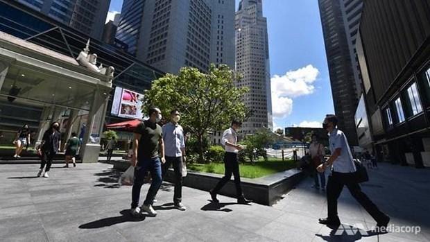Economia de Singapur muestra leve recuperacion en primer trimestre hinh anh 1