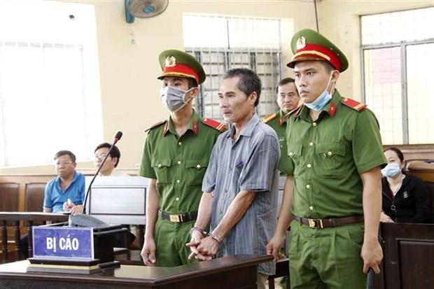 Apresan en Ca Mau a responsable de organizar entrada ilegal en Vietnam hinh anh 1