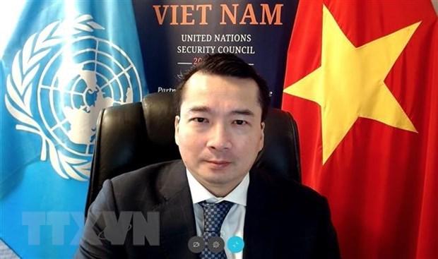 Vietnam y Consejo de Seguridad: Aprueban dos resoluciones sobre Libia hinh anh 1