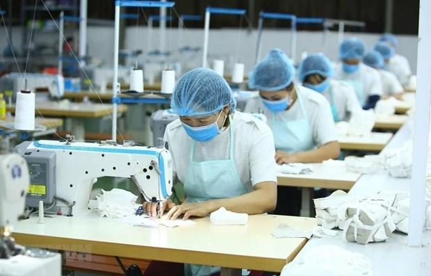 Aumentan trabajadoras con empleos informales en primer trimestre en Vietnam hinh anh 1