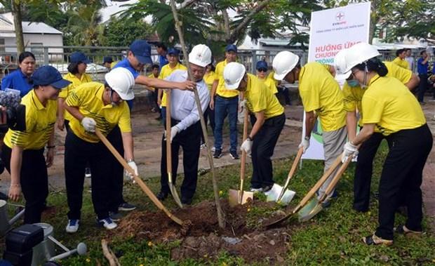 Lanzan en provincia vietnamita programa de plantacion de arboles hinh anh 1