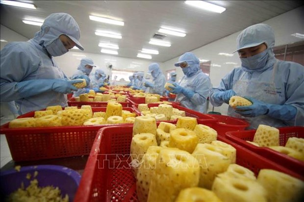 Presentan a empresas vietnamitas guia de exportacion al mercado chino hinh anh 1