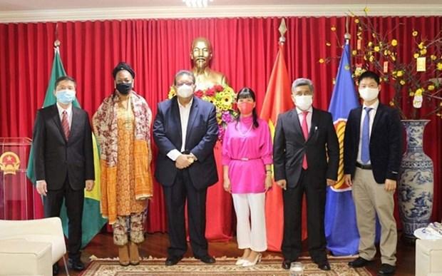 Vietnam dispuesto a promover cooperacion multifacetica con Surinam y Bolivia hinh anh 1