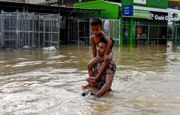 Lluvias intensas destruyen cientos de viviendas en provincias camboyanas hinh anh 1