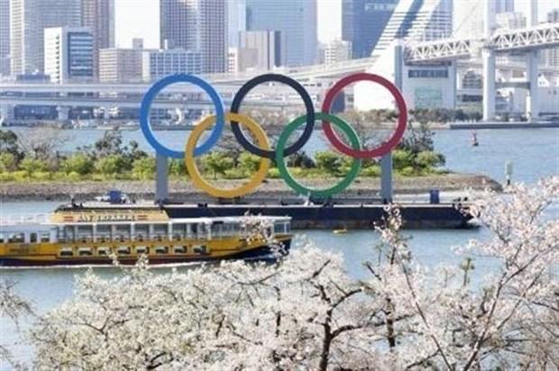 Deporte vietnamita obtiene septimo boleto a los Juegos Olimpicos de Tokio hinh anh 1