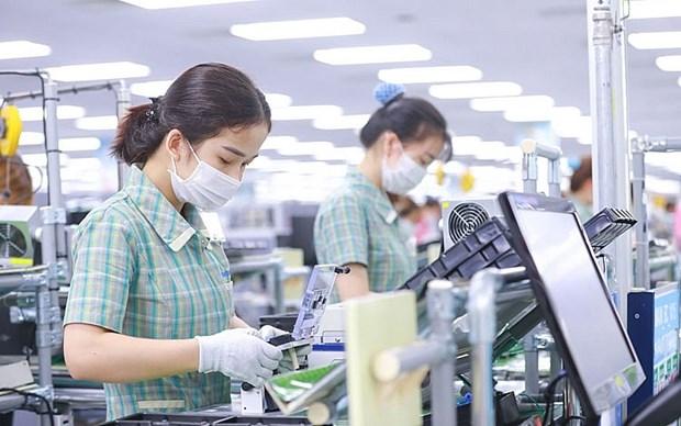 Empresas de Argentina buscan expandirse a Vietnam hinh anh 1