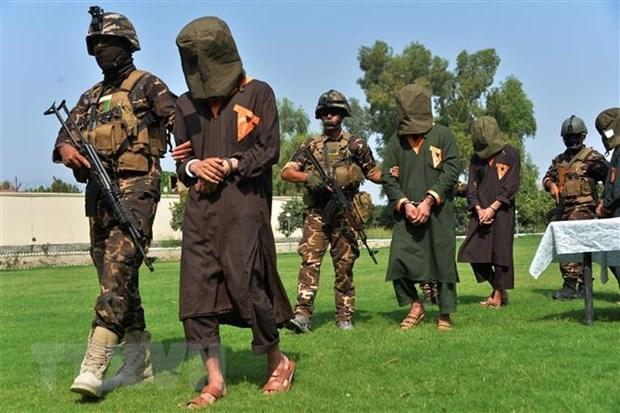 Vietnam respalda investigaciones de ONU sobre crimenes del Estado Islamico en Iraq hinh anh 1