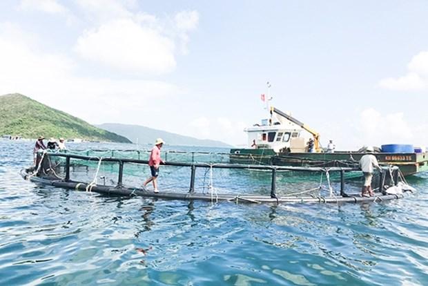 Vietnam planifica desarrollo de cultivo acuicola en la nueva coyuntura hinh anh 1