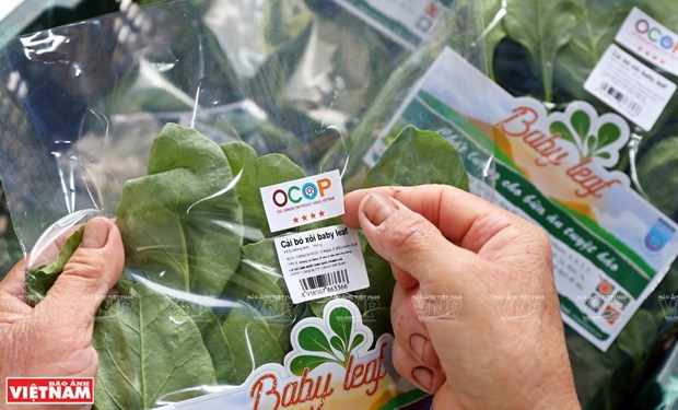 Hanoi realiza cinco tareas clave para garantizar la seguridad alimentaria hinh anh 2