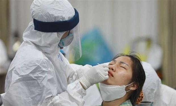 Reporta Vietnam 19 casos locales del COVID-19 hinh anh 1