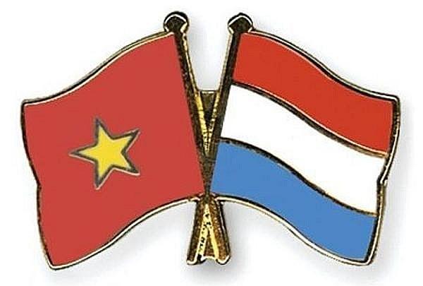 Conmemoran 48 anos de las relaciones diplomaticas Vietnam-Paises Bajos hinh anh 1