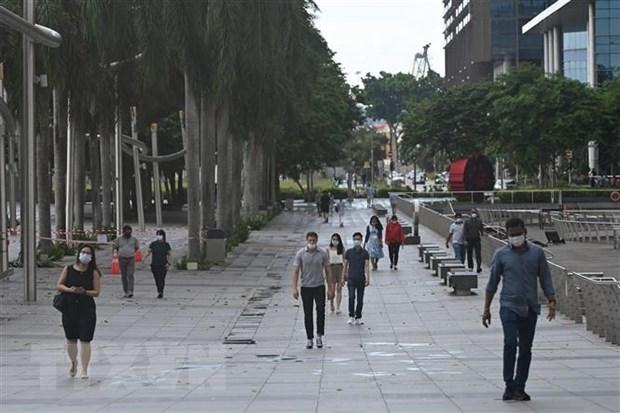 Singapur experimenta record de contagios locales durante un ano hinh anh 1