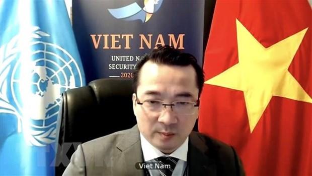 Vietnam pide respetar el alto el fuego en Libia hinh anh 1