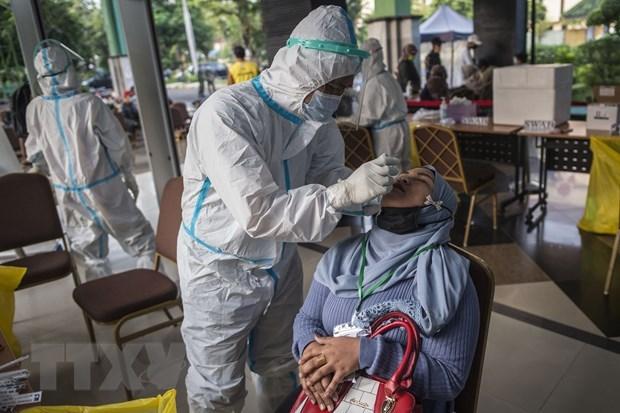 Indonesia detecta 26 casos con nuevas variantes del virus SARS-CoV-2 hinh anh 1
