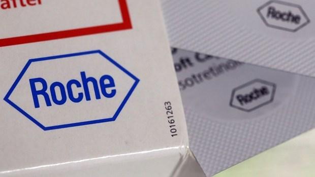 Vietnam desea una mayor cooperacion con grupo suizo Roche en lucha contra el COVID-19 hinh anh 1
