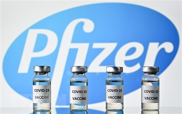 Vietnam recibira 31 millones de dosis de vacuna Pfizer contra COVID-19 hinh anh 1