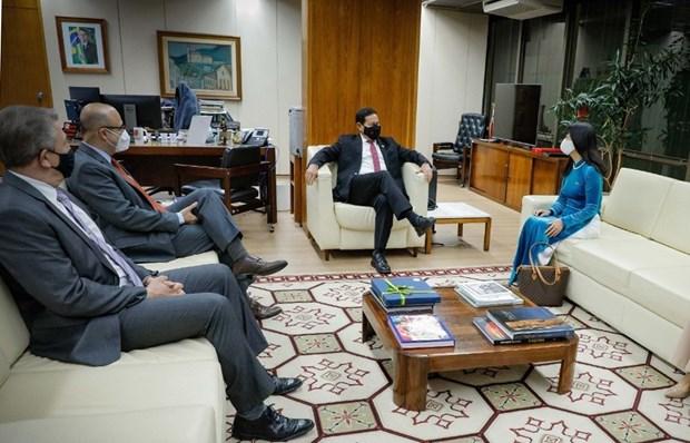 Vietnam aspira a fortalecer nexos con Brasil, afirma embajadora hinh anh 2
